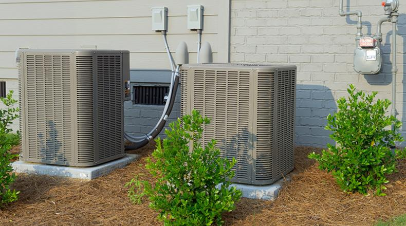 Could Insects Be Coming From The HVAC System?