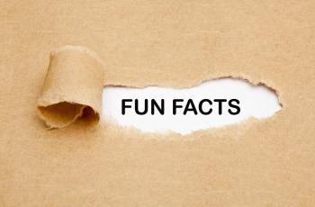 Fun facts text on cardboard background